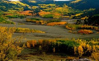 Colorado Valley with Aspen Colors