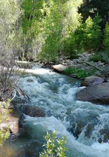 Upper Beaver Creek Colorado